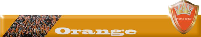 チームカラー 橙 オレンジ