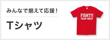 応援用オリジナルTシャツ